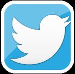 twitter social media management
